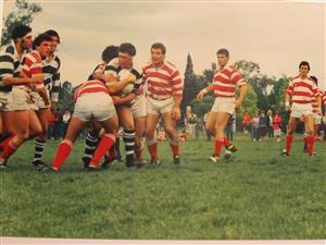 Fauve, Sebastian - Rugby -  - Asociación Alumni - 1984/Sep/12
