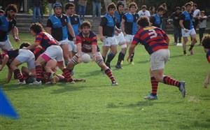 Atacando con el pilar - Rugby - Superior (M) - Curupaytí Club de Rugby - Club Universitario de Buenos Aires