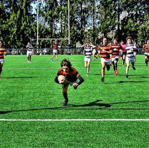 M15 fecha 1 del 2019 - Rugby - M15 (M) - Olivos Rugby Club - Club Atlético de San Isidro