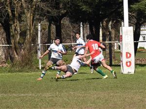 M17 en 2016 - Rugby - M17 (M) - Los Cedros -