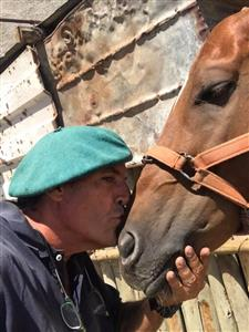 Amor por los caballos - Polo -  -  -