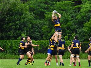 Easy on the line - Rugby -  - Town of Mount Royal RFC -