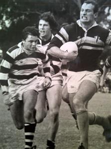 - Rugby - Superior (M) - Club Atlético de San Isidro - San Isidro Club