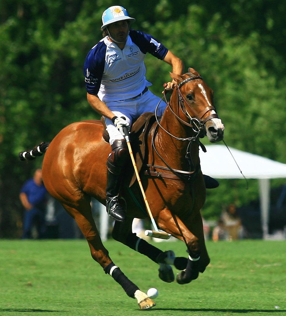 El mejor del mundo - La Dolfina Polo Club - CAMBIASO, Adolfo - Polo - 2020/Mar/01