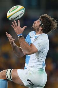 Arriba, a buscar la pelota - Rugby -  -  -