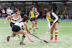 Las chicas de Almirante Brown recibieron, en el Club DAOM, a sus pares de Banco Central - Field hockey -  - Banco Central - Almirante Brown