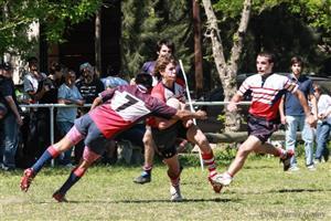 - Rugby -  - Areco Rugby Club - Club Daom