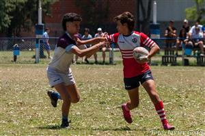 - Rugby - M16 - Areco Rugby Club - Club Argentino de Rugby