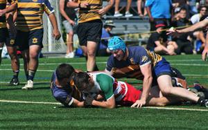 - Rugby -  - Town of Mount Royal RFC - Rugby Club de Montréal