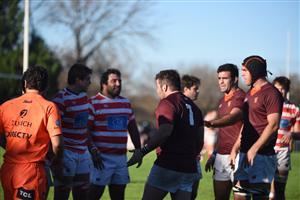 Intercambio de opiniones - Rugby -  - Newman - Asociación Alumni
