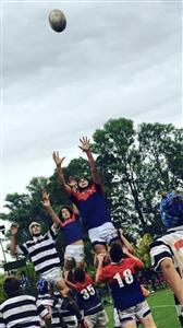 M16 Depo 20- CASI 16 - Rugby -  - Club Atlético de San Isidro - Asociación Deportiva Francesa